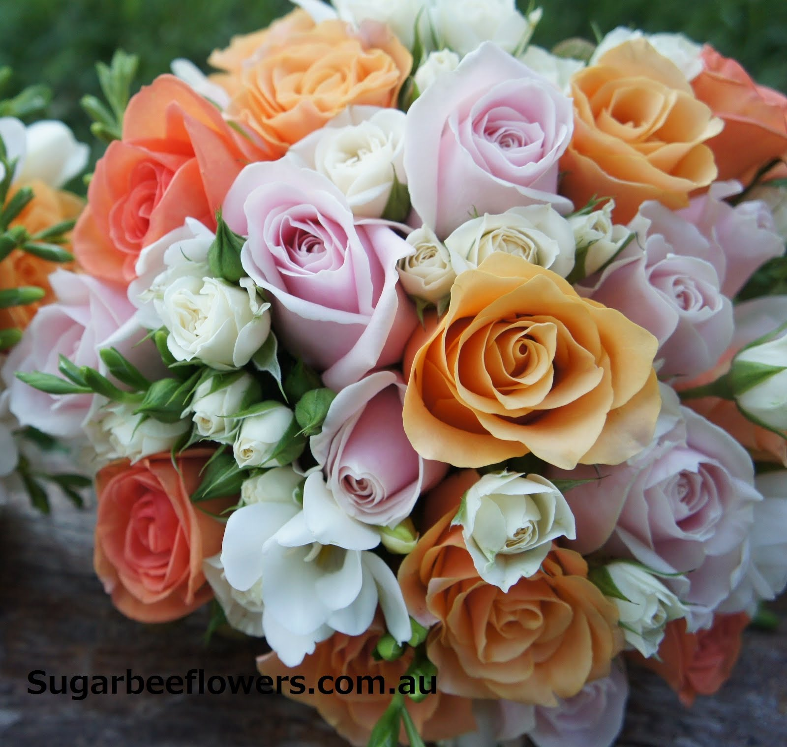 Sugar bee flowers orange pink white wedding flowers orange pink white wedding flowers mightylinksfo