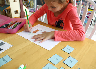 Tessa sorted word cards into two piles...one for nouns and one for not nouns. Then, she wrote sentences, which she also illustrated, for the nouns in a notebook.