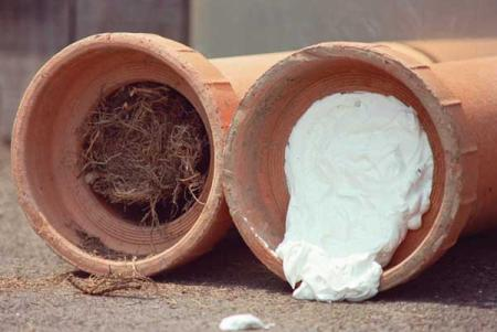 how to stop tree roots getting into sewer pipes