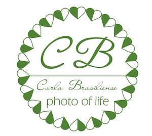 Carla Brasiliense Fotografia