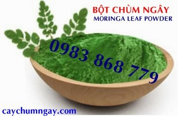 Moringa powder is also