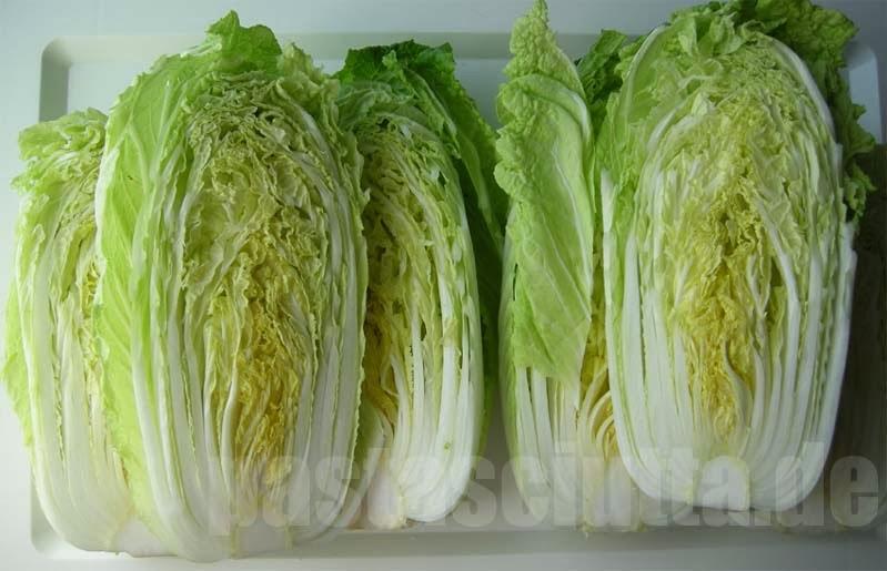 Chinakohl für Kimchi