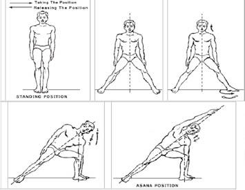 Yoga Postures - Yogasanas-1