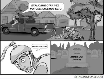 jirafas amor amaba muerto estupido