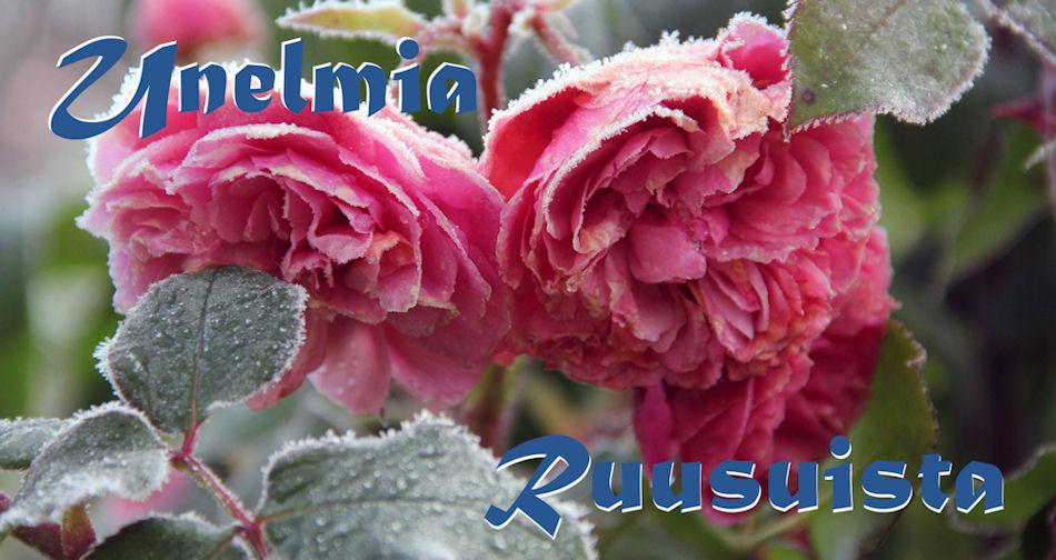 Unelmia ruusuista