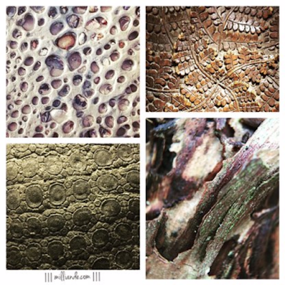 Surface Pattern Design Trend - Earthed , Design Process by III milliande de III