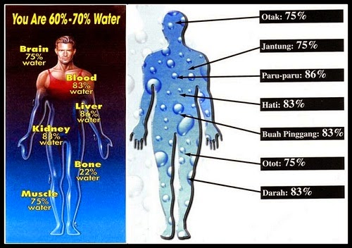 akibat dari kekurangan dan kelebihan air bagi tubuh kita