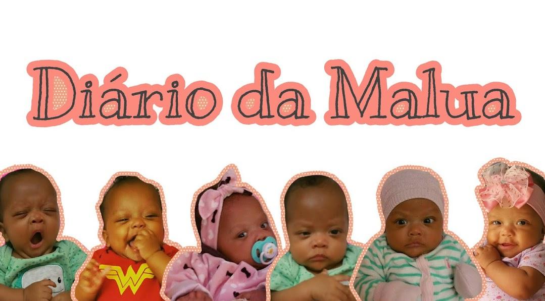 ☆ Diário da Malua ☆
