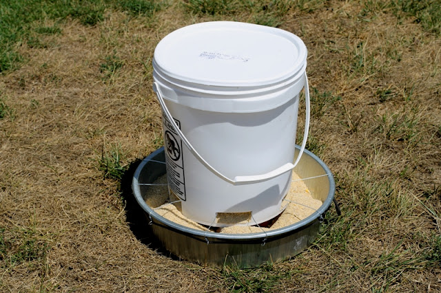 5-gallon bucket turned feeder
