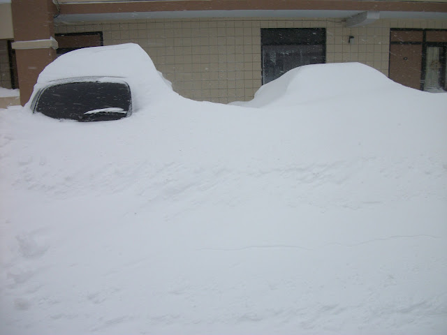 Cars Buried During Blizzard of 2013, Danvers, Massachusetts