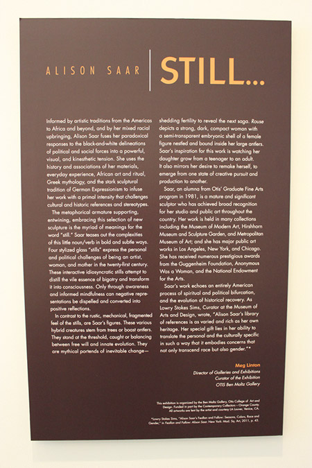 Photograph of the Introduction of the Saar exhibit details.