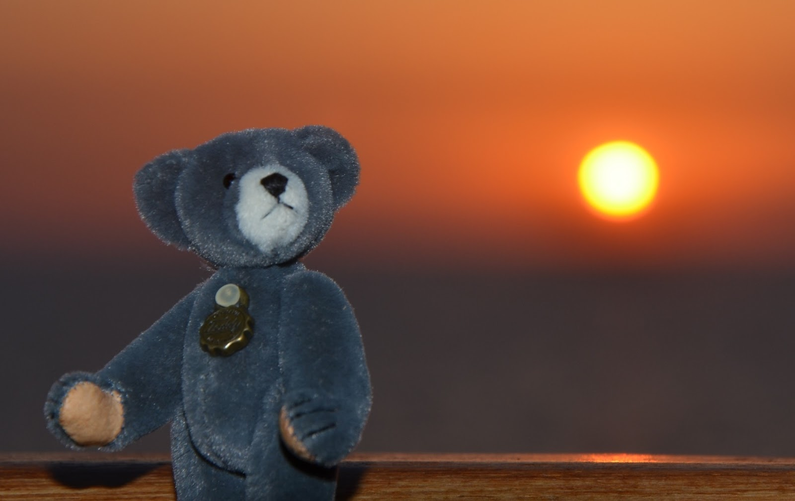 It's Hermann Bear's Blog Now!