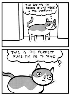funny cat comic