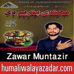 http://www.humaliwalayazadar.com/2015/10/zawar-muntazir-nayyar-nohay-2016.html