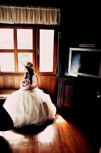 ตัดชุดแต่งงานเชียงใหม่