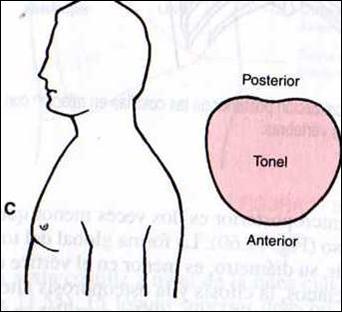 La clínica del doctor el tratamiento de la espalda