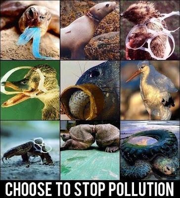 responsible traveler bertanggung jawab dampak lingkungan