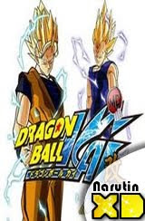 Dragon Ball Kai 96 online