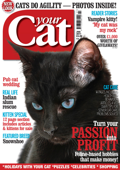 Your Cat July Cover