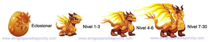 imagen de crecimiento del dragon sol