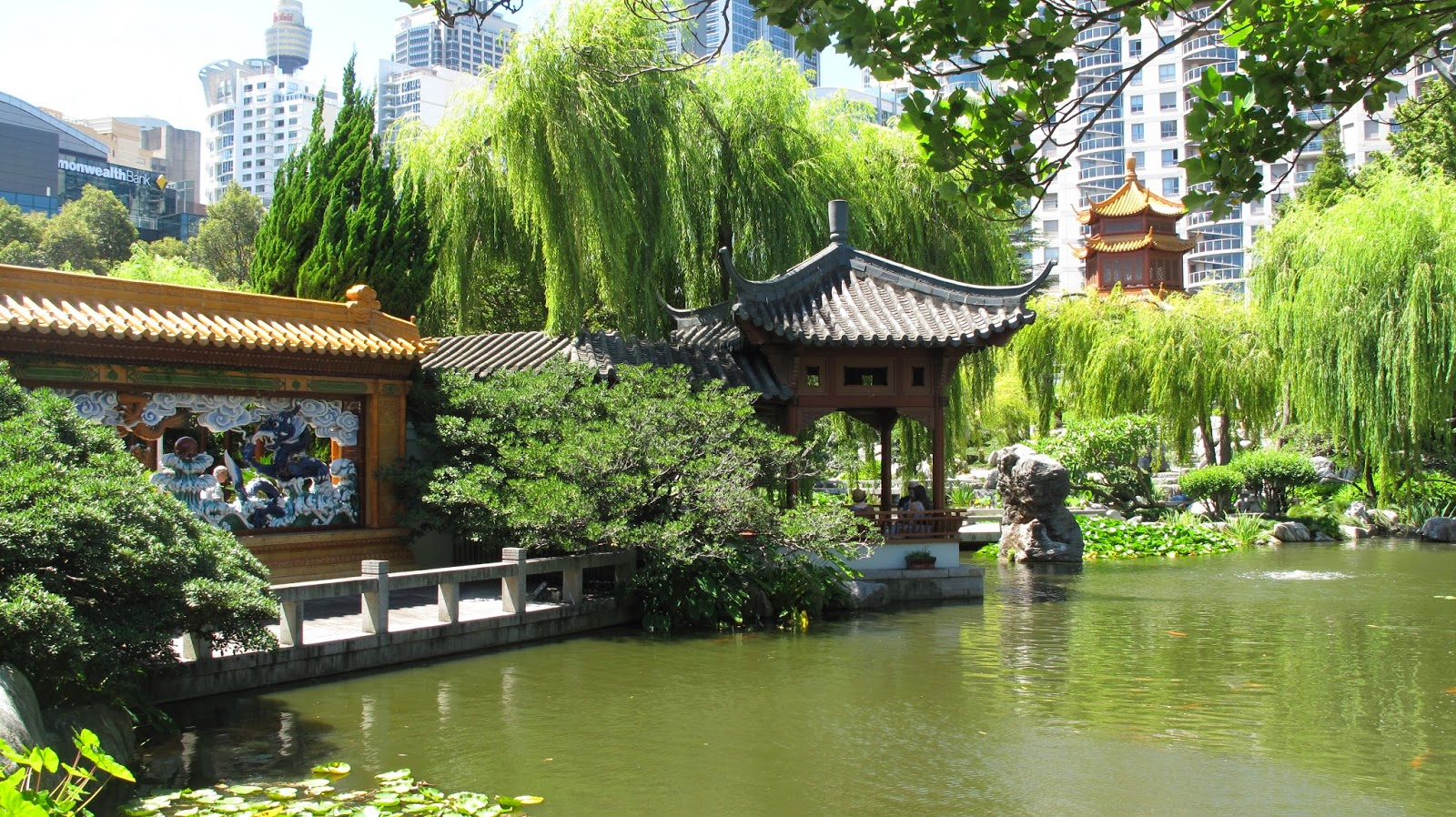 Real world gardener chinese gardens japanese flowers for Garden designs sydney