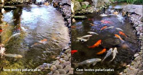 Óculos na pescaria - Lentes polarizadas