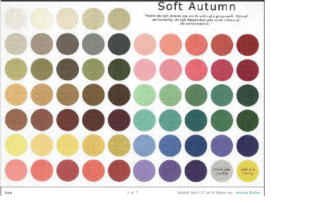 Beauty And Elegance The Final Test Soft Autumn Vs True