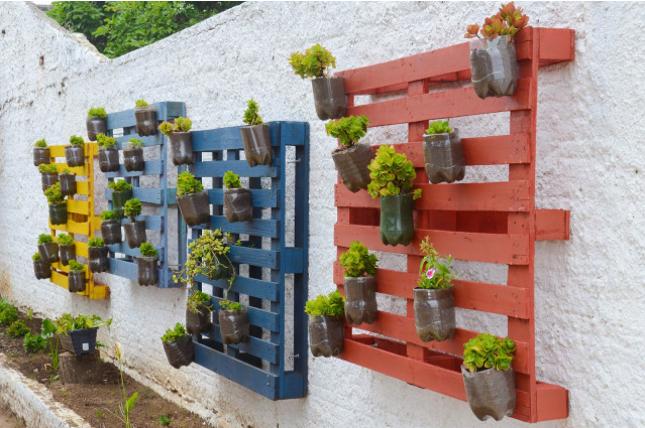 precisa de um painel de madeira pallet vasos e plantas