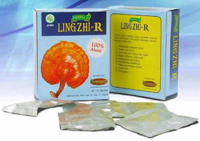 herbal jamur lingzhi
