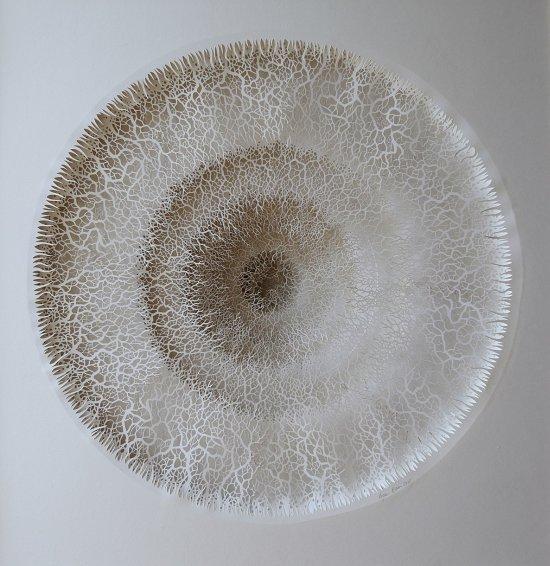 Rogan Brown esculturas de papel organismos microscópios micróbios células biológicas natureza