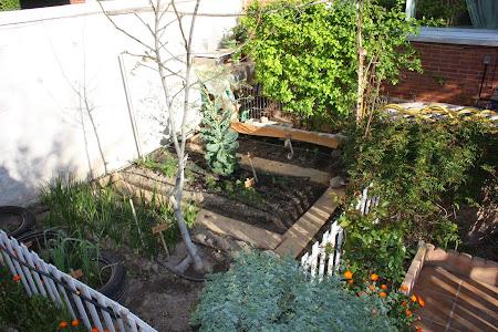 Mi huerto y jardín