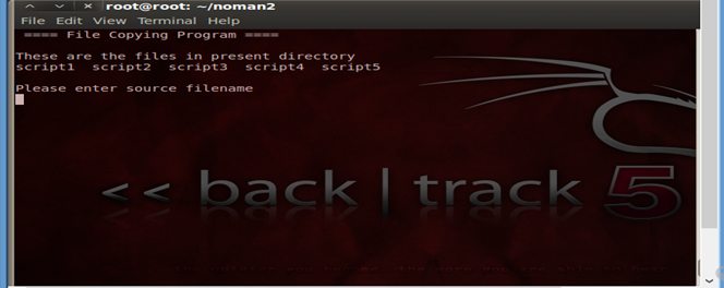 How to check files in Backtrack