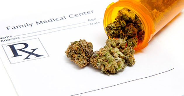 U.S. Govt. National Cancer Institute Finally Admits That ?Cannabis Kills Cancer?