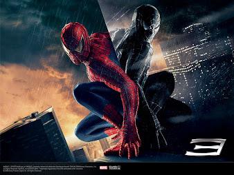 #17 Spider-man Wallpaper