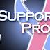 Support pro-life pregnancy advice clinics.
