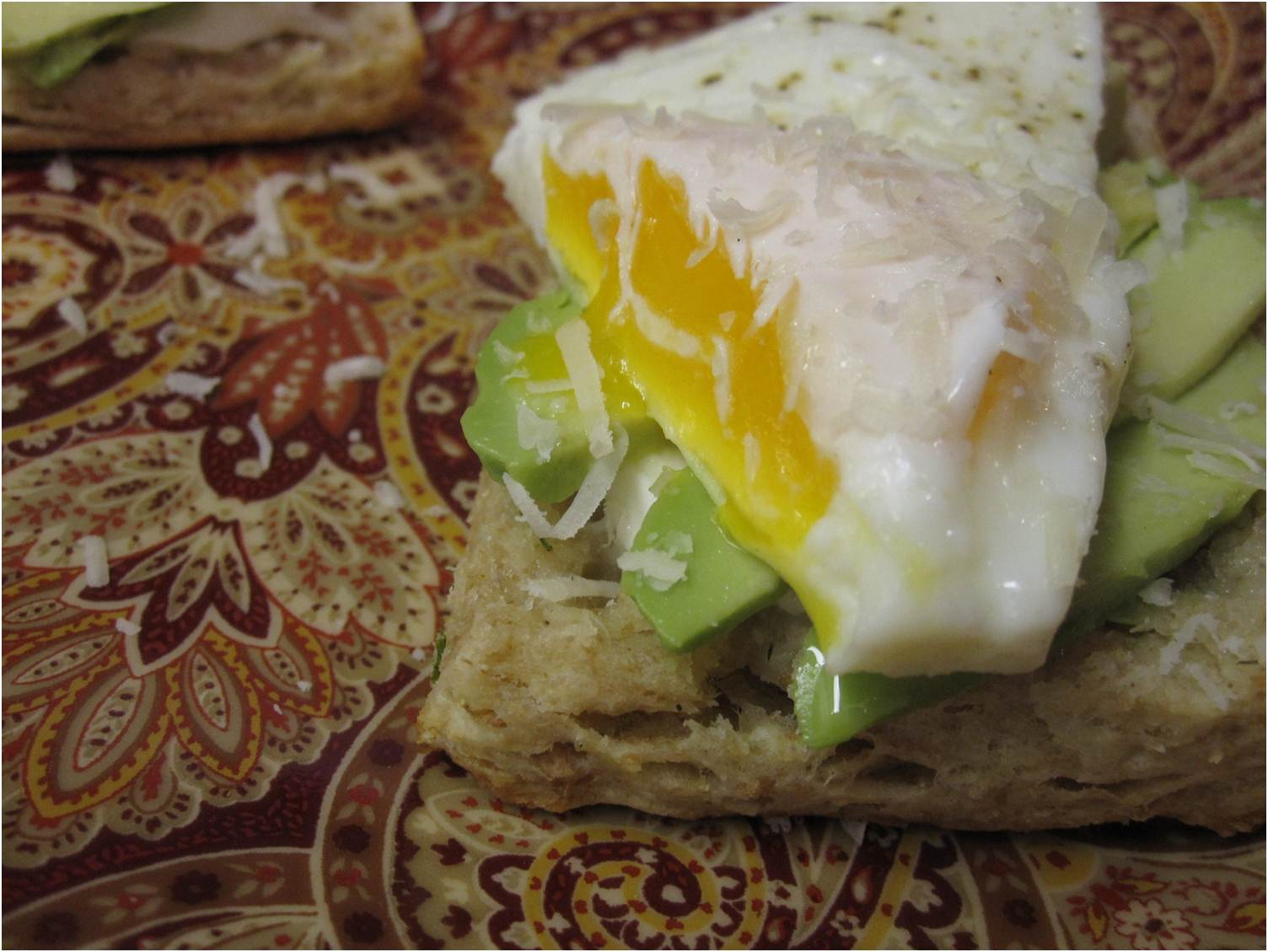 ... biology: Green onion, dill and yogurt biscuits with eggs and avocado