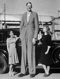 Comparision of Robert wadlow height with 2 girls