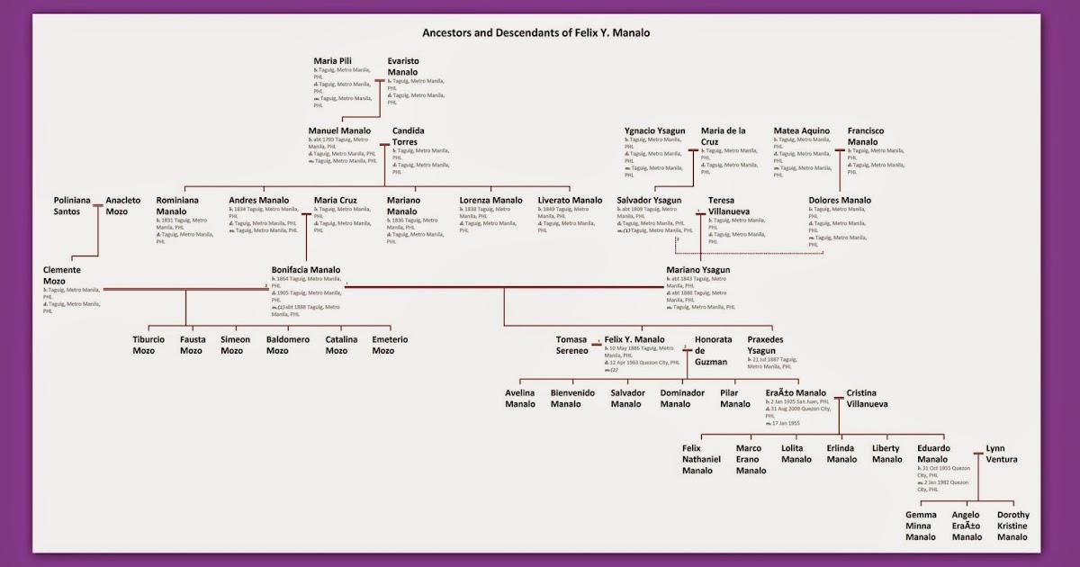 jose rizal ancestry