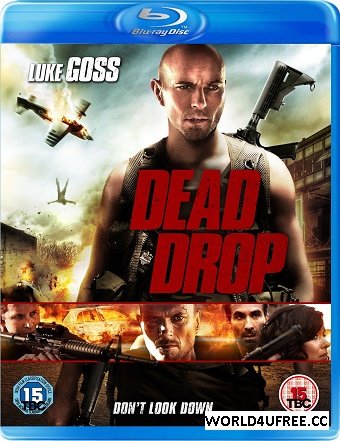 Dead Drop 2013 Dual Audio [Hindi Eng] BRRip 480p 300mb