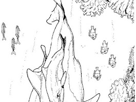 Baby Dolphin Coloring Pages
