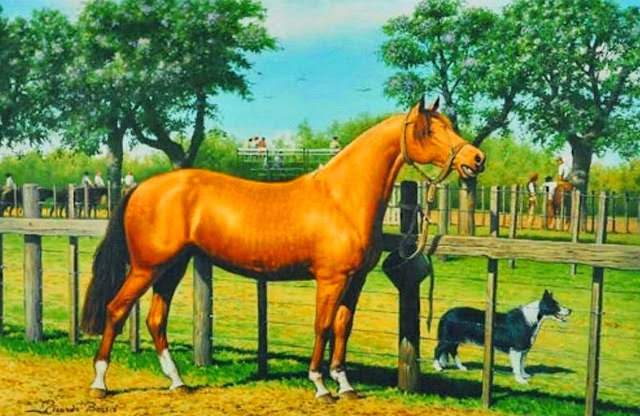 imagenes-de-caballos-pintados