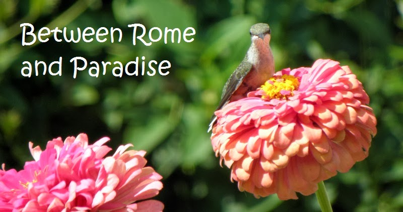 Between Rome and Paradise