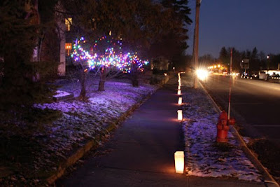 luminaria and lighted trees