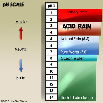 acid rain webquest 1 Earth science: the air around you, book i chapter 4: air pollution virtual lab where in the us is acid rain most severe.