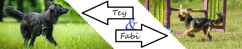 Fabi & Tey