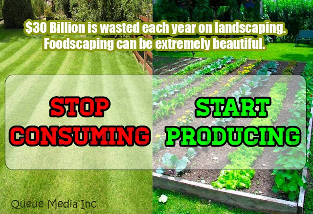 $30 Billion is wasted each year on landscaping. Foodscaping can be extremely beautiful.