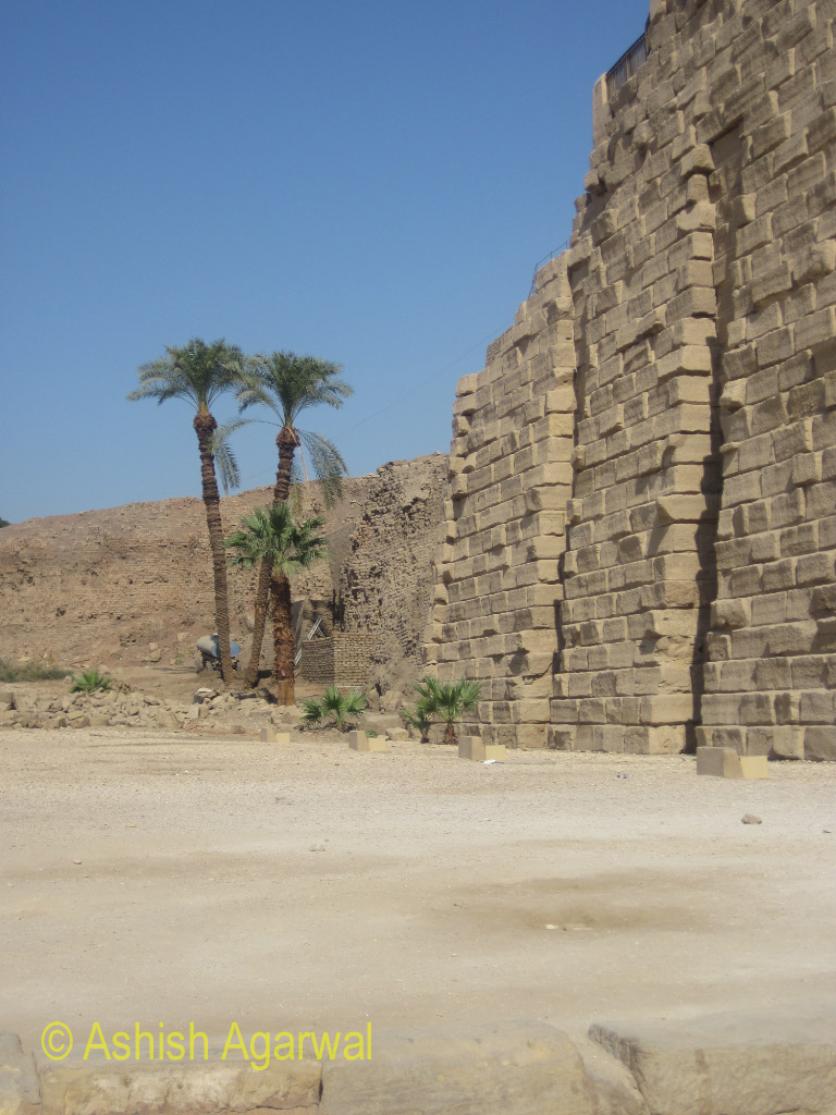 Trees at one side of the walls (made of stone bricks) at the Karnak temple