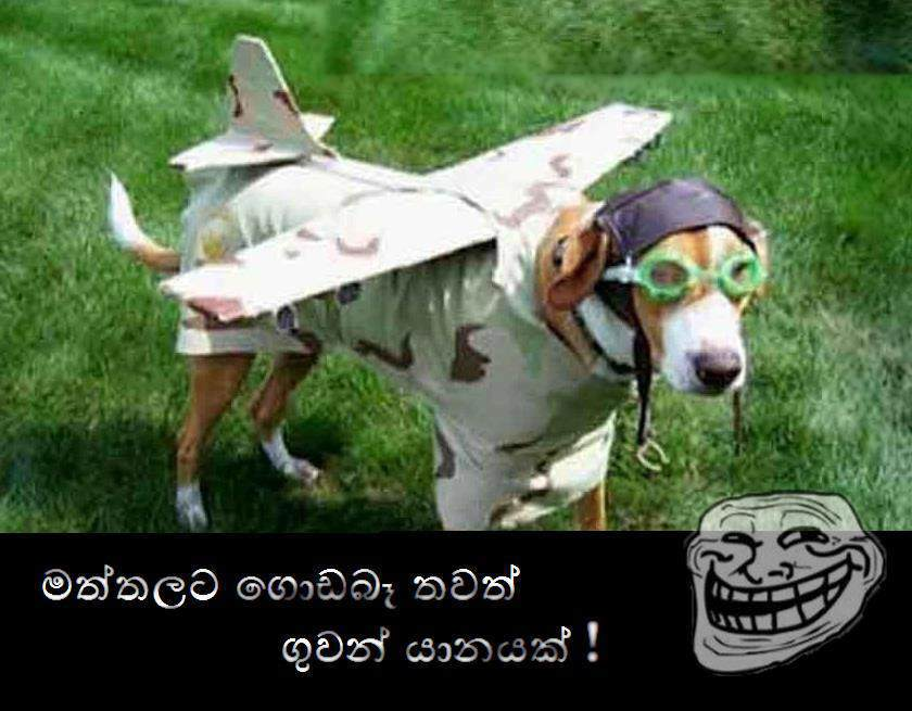 Download image Sri Lankan Funny Jokes Ajilbab Com Portal PC, Android ...