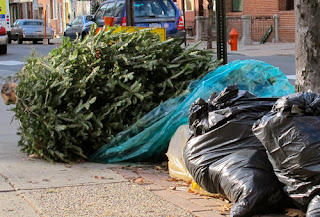 as usual the city of chicago is offering recycling for your de nuded christmas trees this year - Chicago Christmas Tree Recycling