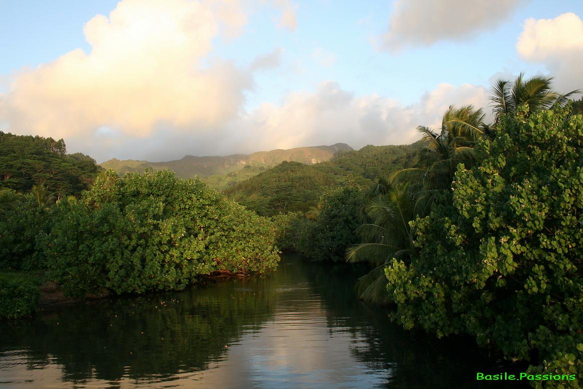 Liaison village vtt raiatea tahiti des chambres d for Chambre 13 tahiti plage mp3